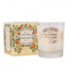 Bougie Parfumée - PANIER DES SENS|Absolue Fleur d'Oranger